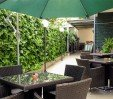 thumbs  - Private garden - Hotel Bellini Riccione (7/58)