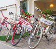 thumbs  - Bike available - Hotel Caribia Pinarella di Cervia (27/35)