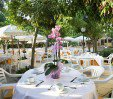thumbs  - Lunch in the Garden Restaurant - Hotel Alexandra Plaza Riccione (7/27)