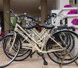 thumbs  - Free use of bicycles (with seats) - Hotel Haiti Cattolica (25/30)