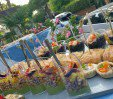 thumbs  - Aperitif in the garden - Hotel Riz Cervia (18/60)