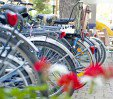 thumbs  - bicycle hotel - Hotel Giunchi B&B Pinarella di Cervia (24/29)