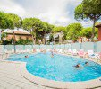 thumbs  - Outdoor swimming pool at the Atrium hotel - Hotel Brown Rimini Mare (31/35)