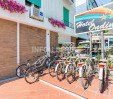 thumbs  - bicycles - Hotel Ondina B&B Cattolica (52/57)