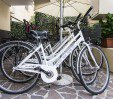 thumbs  - bicycles - Hotel Blu Star Gabicce Mare (31/38)