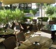 thumbs  - outdoor garden with tables and chairs - Hotel dell'Amarissimo Bellaria (6/66)