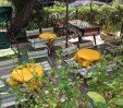 thumbs  - Relaxing garden - Hotel Montebello B&B Riccione (6/38)
