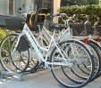 thumbs  - bicycles for free use, even with baby seats - Hotel Tiffany's Cattolica (33/35)