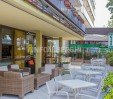 thumbs  - garden - outdoor area of ​​the hotel - Hotel City Rimini Mare (11/57)