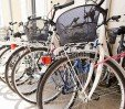 thumbs  - Use of bicycles - Hotel La Plata Riccione (24/27)