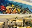 thumbs  - dining room, spacious, cozy and air-conditioned - Hotel Acquario Torre Pedrera (10/32)