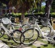 thumbs  - Bicycle Park - Hotel Bassetti Pinarella di Cervia (68/73)