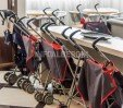 thumbs  - Strollers available for free - Hotel Alexander Cattolica (36/38)