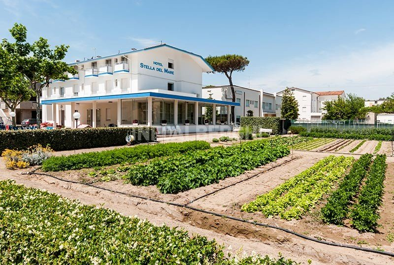 our hotel in the countryside at 2 steps from the sea - Hotel Stella del Mare Igea Marina (2/54)